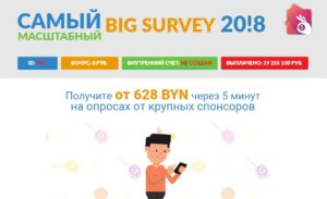 Отзыв о лохотроне Big Survey 2018